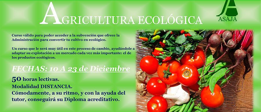 Curso de agricultura y ganadería ecológica a distancia
